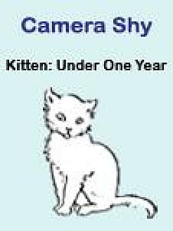 Domestic Shorthair Cat for adoption in Roseville, California - Cheshire