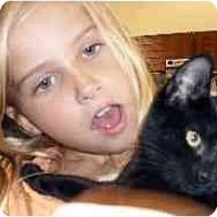 Adopt A Pet :: Rosebud - Jacksonville, FL