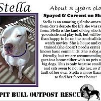 Adopt A Pet :: Stella - Lafayette, OR