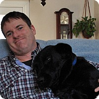 Adopt A Pet :: ADORABLE JULIUS - Cornwall, ON