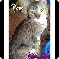 Adopt A Pet :: Romy - Mobile, AL