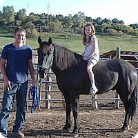 Adopt A Pet :: Seven - Durango, CO