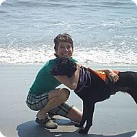 Adopt A Pet :: Lucy - Purcellville, VA