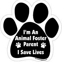 Adopt A Pet :: RI/CT - Fosters Needed - W. Warwick, RI