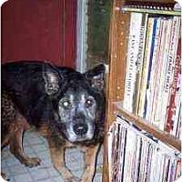 Adopt A Pet :: Rema - Emory, TX