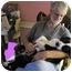 "Photo 2 - Border Collie/Australian Shepherd Mix Puppy for adoption in Winnsboro, South Carolina - Olivia ""NewtonJohn"""