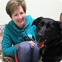 Adopt A Pet :: Sissy-Prison Graduate - Elyria, OH