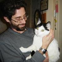 Adopt A Pet :: Max - Saskatoon, SK