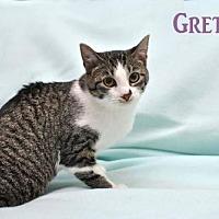 Adopt A Pet :: Gretel - Tonawanda, NY