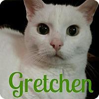 Adopt A Pet :: Gretchen - Grand Blanc, MI