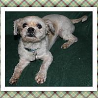 Adopt A Pet :: Higgins -  IL - Tulsa, OK